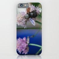 Carpenter Bee 1 iPhone 6 Slim Case