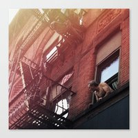 Man In Window - New York City - Photograph Canvas Print