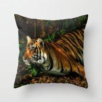 Bengal Beauty Throw Pillow