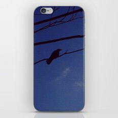 Bird on Tree  iPhone & iPod Skin