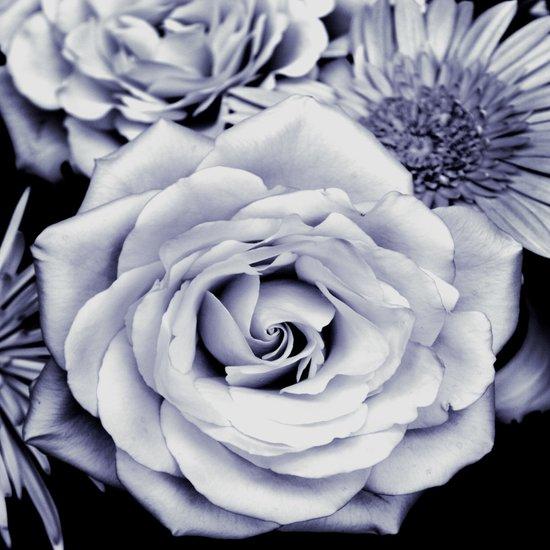FLOWERS IV Art Print