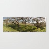 Oak Ridge Canvas Print
