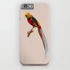 Pheasant Slim Case iPhone 6s
