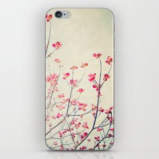 Ruby and Rose Quartz -- Red Pink Dogwood Tree in Flower iPhone & iPod Skin