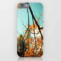 Colors of Fall iPhone 6 Slim Case