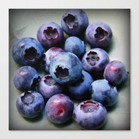 Blueberries - You Know You Want One Canvas Print