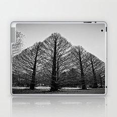 winter session Laptop & iPad Skin