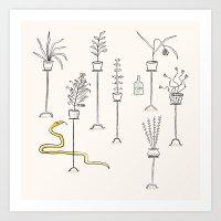 Plants, Snake And Rum. Art Print