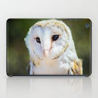 The Barn Owl  iPad Case