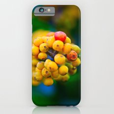 In the shape of  a heart.  iPhone 6 Slim Case