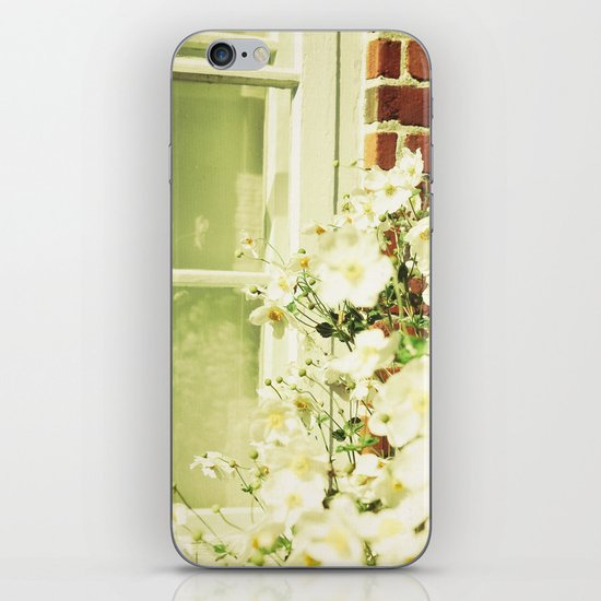 Beauty in an Ordinary Day iPhone & iPod Skin