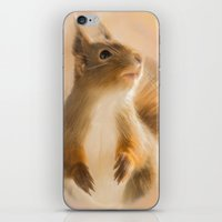 Squirrel, oil and chalk painted squirrel iPhone & iPod Skin