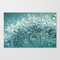 Twinkle In Blue Canvas Print