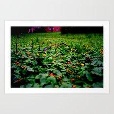 Meadow no.2 Art Print