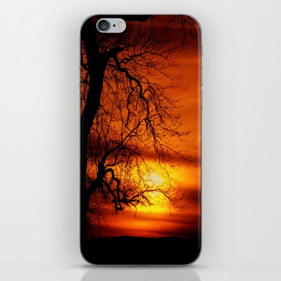 Reaching For The Light iPhone & iPod Skin