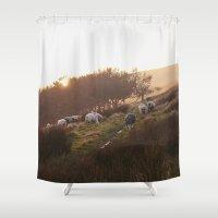Sheep Grazing On Hillsid… Shower Curtain