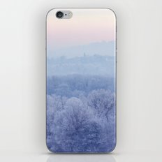 Frost iPhone & iPod Skin