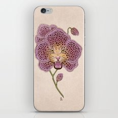Wild Orchid iPhone & iPod Skin