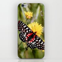 A Red Dotted Checkerspot iPhone & iPod Skin