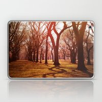 'CENTRAL PARK TANGLE' Laptop & iPad Skin