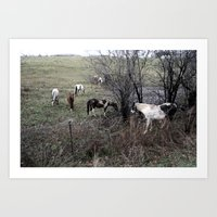 Horses All in A Row Art Print