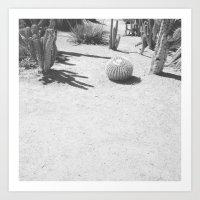 Cacti - In Black & White Art Print