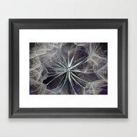 Meadow Salsify 5143 Framed Art Print
