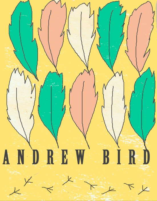 Andrew Bird 'Feathers' Art Print