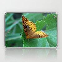 Great Spangled Fritillar… Laptop & iPad Skin
