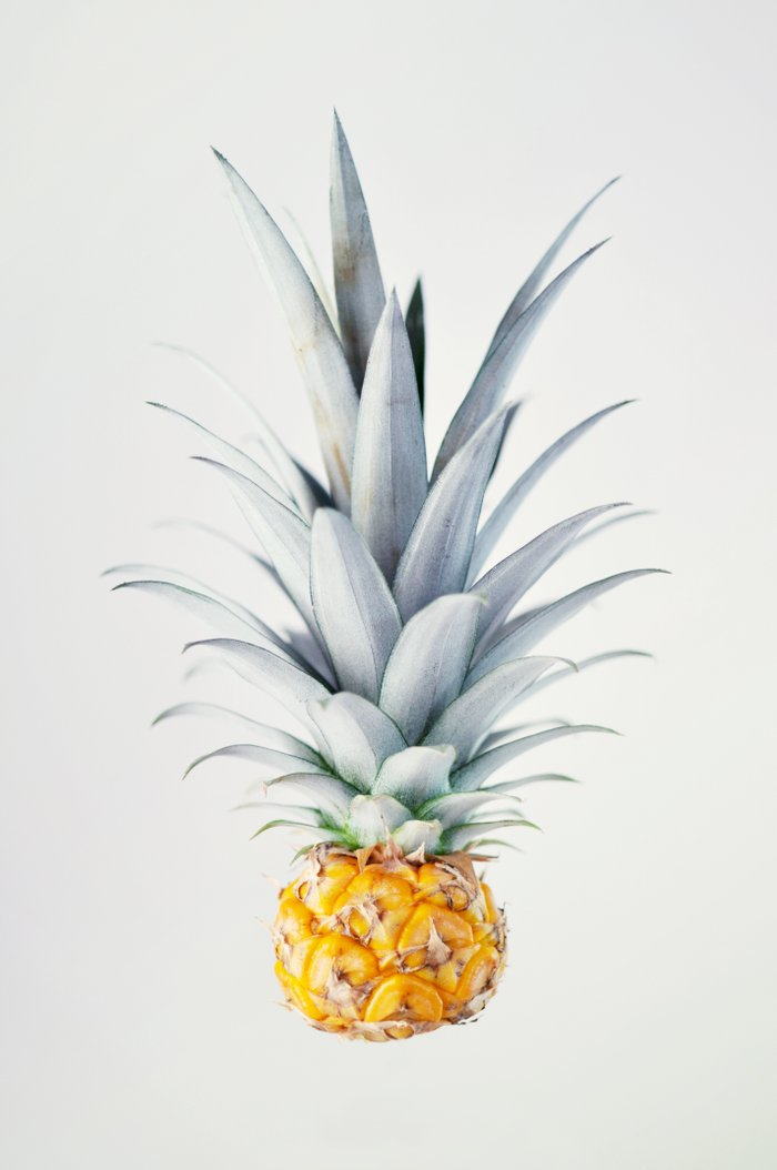 Pineapple Art Print by Ez Pudewa