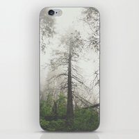 Whispering trees iPhone & iPod Skin