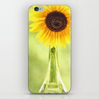 Soak Up The Sun iPhone & iPod Skin