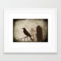 Blackbird 1 Framed Art Print