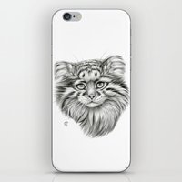 Pallas's Cat G2012-51 iPhone & iPod Skin