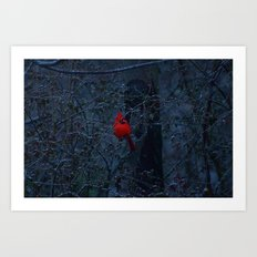 Color in the Dreary Art Print