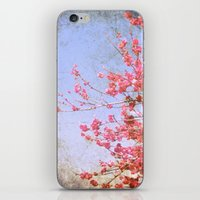 Pink Blossom iPhone & iPod Skin