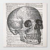 Latin Skull Canvas Print