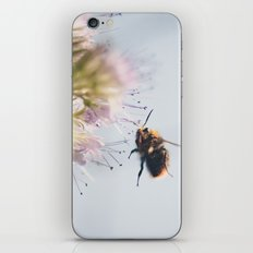 beelanding iPhone & iPod Skin