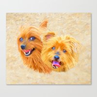 Yorkie Best Buddies Canvas Print