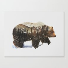 Arctic Grizzly Bear Canvas Print