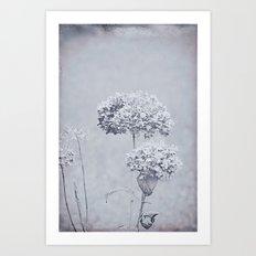 Dried Hydrangea Flowers Dreamy Monochrome Cool Tones Autumn Botanical Art Print