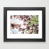 Magnolia Magic Framed Art Print
