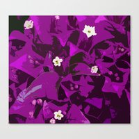 Bouganvilla delight Canvas Print