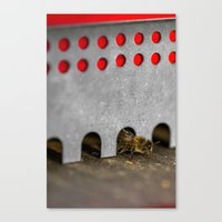 The Bee has the entry of the hive Canvas Print