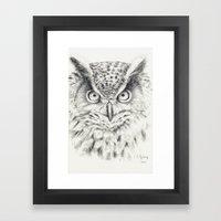 Owl G2011-012 Framed Art Print