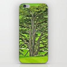 Old English Tree 1 iPhone & iPod Skin