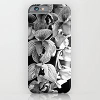 Orchid Noir iPhone 6 Slim Case