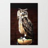 The Batsford Owl Canvas Print