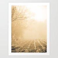 Into Obscurity  Art Print