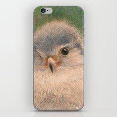 Nestling iPhone & iPod Skin